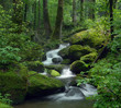 Leinwandbild Motiv Mossy waterfall