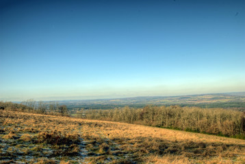 South Downs Looking towards Petworth