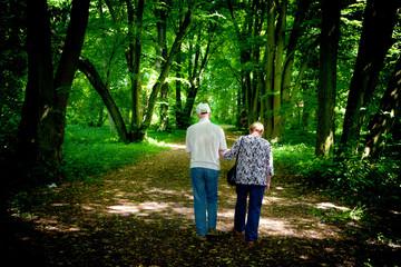 Elderly couple walking in the spring park