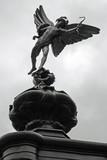Fototapeta jasny - cyrk - Pomnik Artystyczny