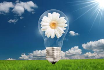 lampadina con fiore