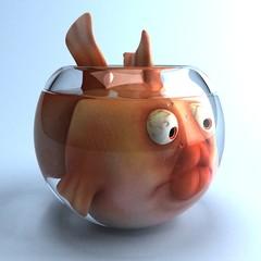 Gros poisson triste