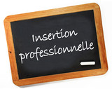insertion professionnelle poster