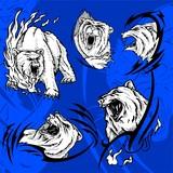Polar Bear.Predators. poster