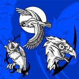 Moon and Owl.Predators. poster