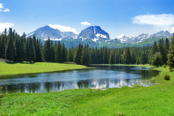 Mountain scenery, National park Durmitor, Montenegro