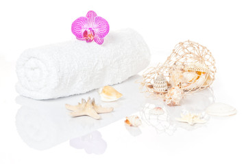 Muscheldekoration mit Orchidee und Handtuch