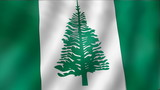 Norfolk Island - waving flag detail
