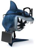 Fototapety Requin commercial