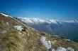 Alpine landscape with green grass