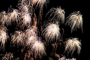 White firework explosions