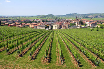 Soave in Italy, famous for its wine and grape vineyards