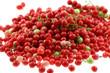 graines de baies roses, fond blanc