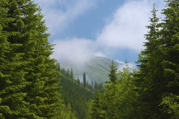Tatra National Park (TANAP), Slovakia