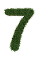 7 grass number