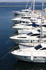 yachts at berth