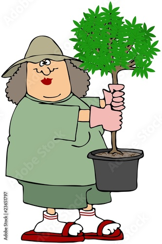 Woman Holding A Potted Tree