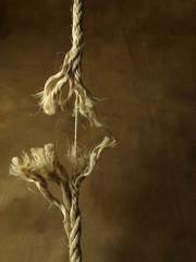 Peligro, cuerda rota