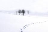 Fototapety Winterimpression