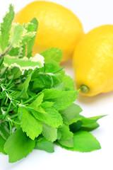 herb and lemon