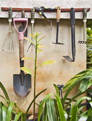 Outils de jardin sur un mur