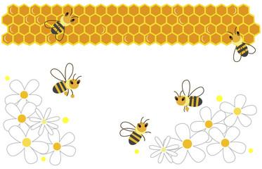 bee white