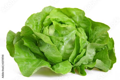 grüner kopfsalat - 23701761