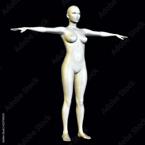Anatomie von reifen Frauen