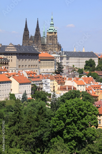 The View on the Prague's gothic Castle with flowering trees