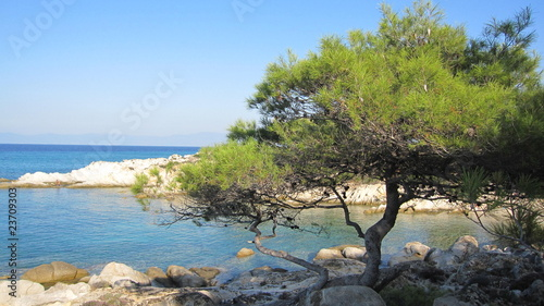 A beautiful beach in Chalkidiki, northern Greece