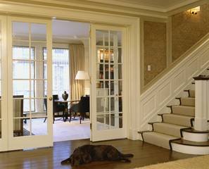 Chocolate Lab at Foot of Stairway in Foyer