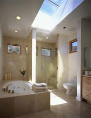 Skylight above Contemporary Bathroom