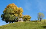 Autumn colors in Transylvania, Romania poster