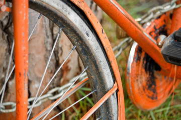Vecchia Bicicletta