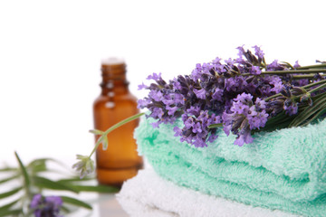 Lavender and Aromatherapy oil