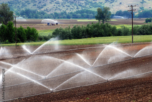 irrigation of agricultural field - 23729328