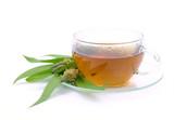 Tee Spitzwegerich - tea ribwort plantain 07 poster