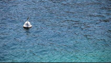 bord de mer