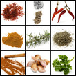 spices and condiments collage