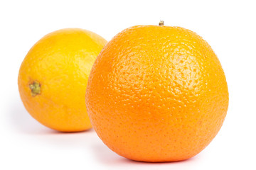 Two oranges isolated on white