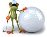 Fototapety Grenouille et golf