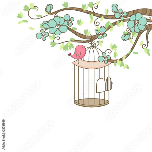 bird and birdcage