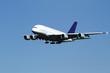 Flugzeug Airbus Landung