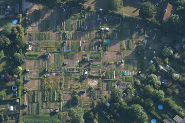 Allotments in Kent