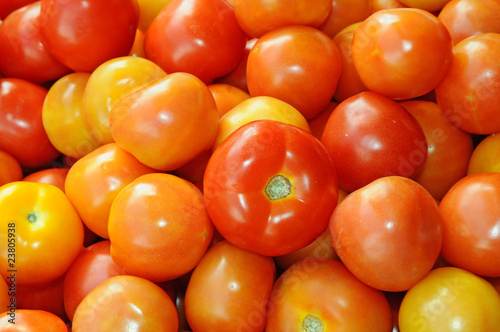 Ripe Tomatoes For Sale