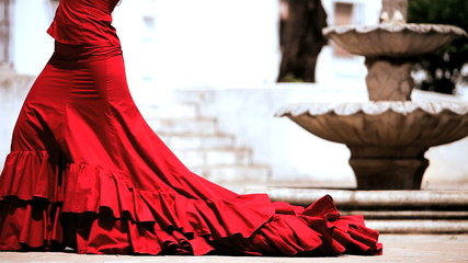 Lower Body of Flamenco Dancer