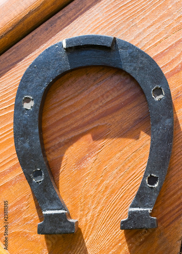Metallic horseshoe