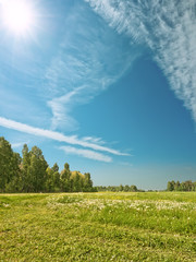 Summer landscape with Siberian nature