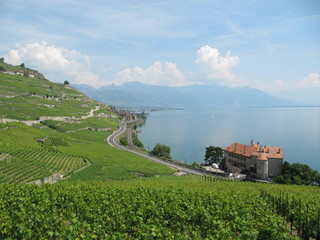 Lavaux and Geneva lake