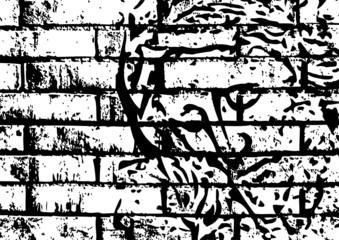 Gesù sul muro
